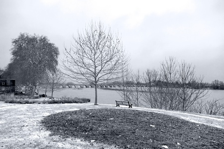 landscape -  brige and trees near the river - monochrome photo