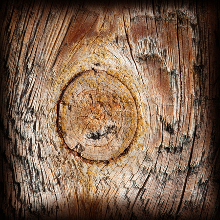treated board: knot and dried wood texture background