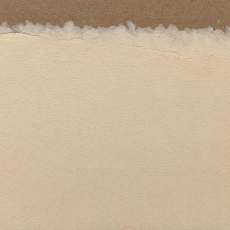 Vintage background - blank paper illustration
