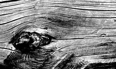 white wood: Grunge black and white wood texture background Stock Photo