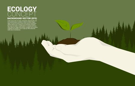 Little Growing tree in human hand with Green tree hill background. Concept for take care Ecology and Environmental theme