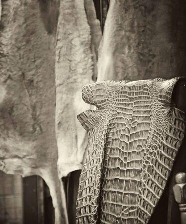 Detail of the Village of Kuranda, Queensland, Australia photo