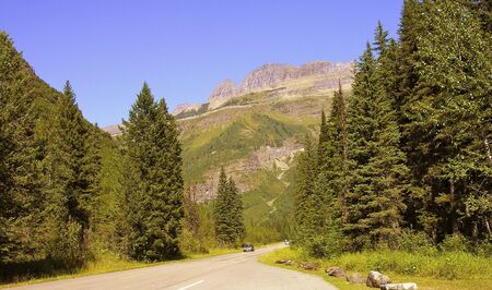 Vegetation of Glacier National Park, United States photo