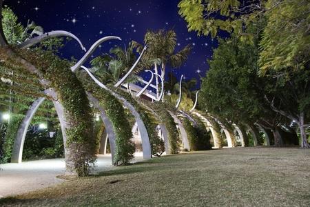 noche estrellada: La noche estrellada sobre Brisbane Jard�n, Australia Foto de archivo