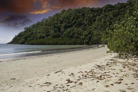 tribulation: Vegetation and Ocean in Cape Tribulation, Australia