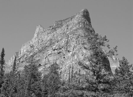 Vegetation of Glacier National Park, United States photo