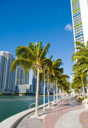 Miami Beach Coastline in Florida, U.S.A. photo