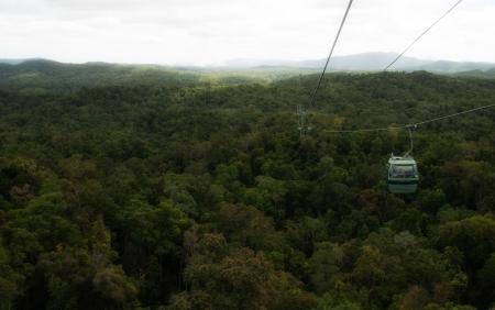 Rai n Forest near Kuranda Village, Queensland, Australia Stock Photo - 14359636