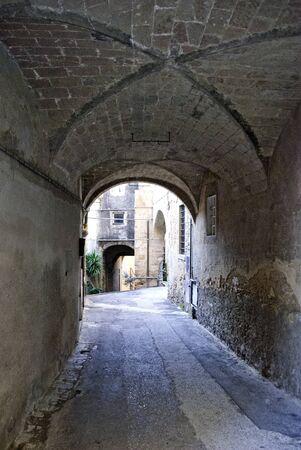 Detail of Castagneto Carducci, Tuscany, Italy photo