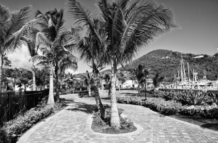 Colours of Saint Thomas, US Virgin Islands photo