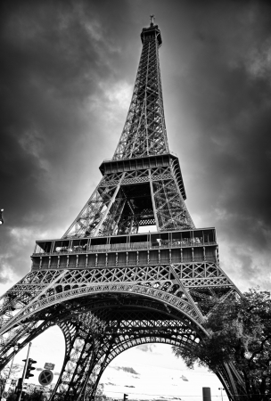 Black and White View of Eiffel Tower, Paris
