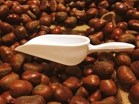 Chestnuts inside a Box in Italy photo