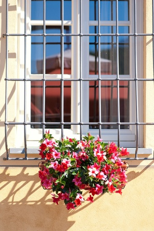 Contryside House Window with Flowers, Italy photo