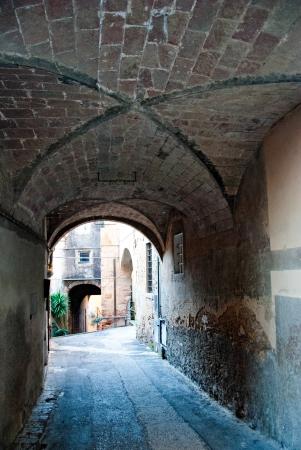 chianti: Detail of Castagneto Carducci, Tuscany, Italy