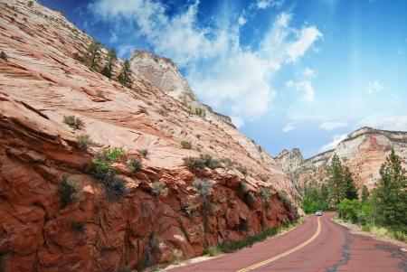 Road inside Zion National Park, U.S.A. photo