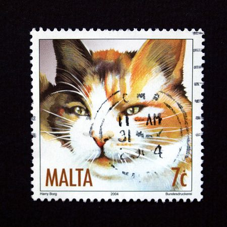 Stamp with cat from Malta Stock Photo - 5294924