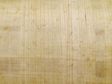 original Egyptian papyrus sheet usefulas a background
