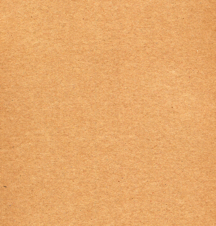 Blank sheet of brown corrugated cardboard useful as a background
