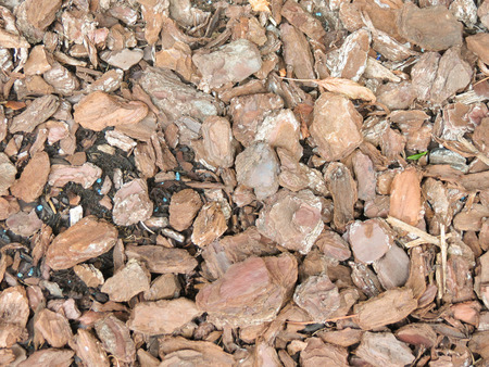 bark mulch: bark mulch texture background