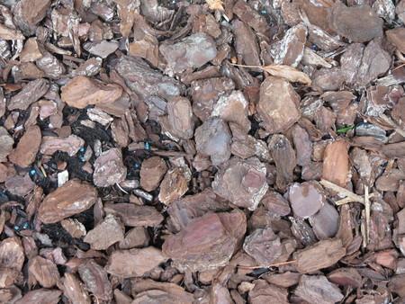 bark mulch: bark mulch texture useful as a background
