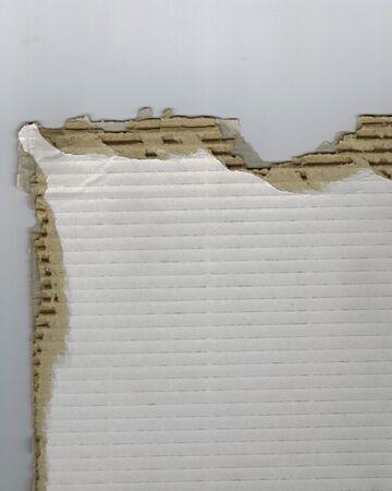 torn: torn corrugated cardboard