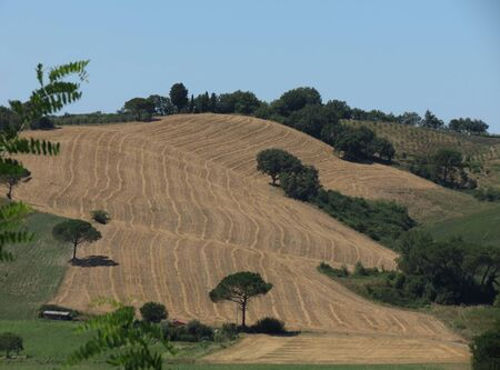chiantishire: Typical landscape with hills in the Chiantishire region in Tuscany, Italy
