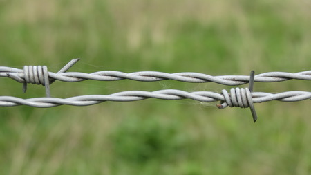 barbed wire fence: Security line with a barbed wire fence