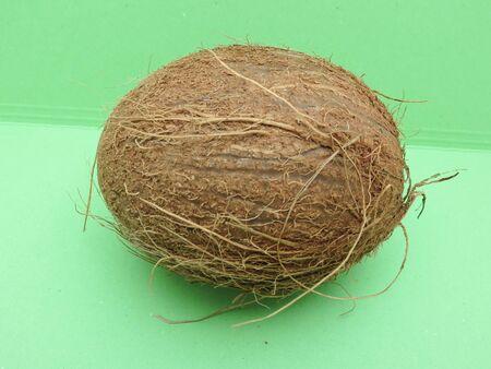 Coconut (cocos nucifera) nut over light green background Stock Photo