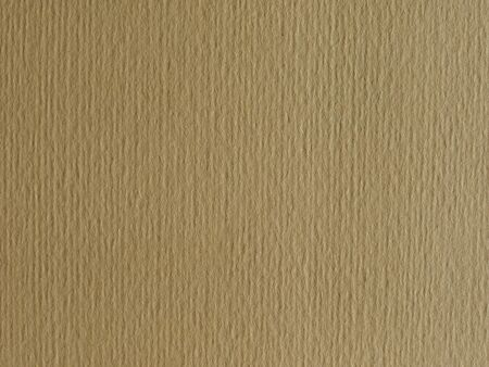 rimmed: Light brown paper surface useful as a background