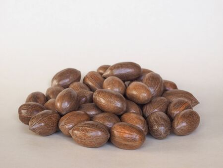 hickory nuts: a bunch of pecan nuts (Carya illinoinensis) still uncracked food
