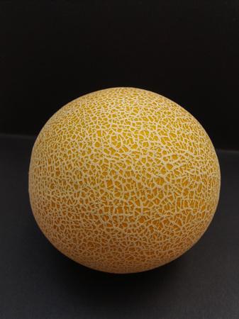 reticulatus: Melon Galia (Cucumis melo var. reticulatus) fruit vegan food
