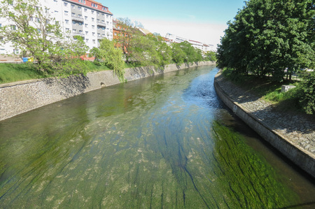 squashy: urban river perspective with algae in water Stock Photo