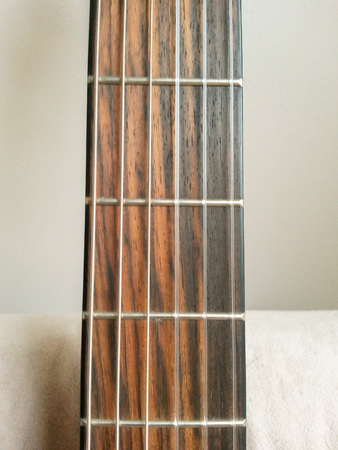 detail of a guitar neck with frets