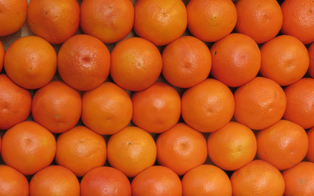Sweet oranges (Citrus x sinensis) fruit vegetarian food background
