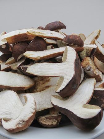 black porcini (boletus aereus) aka bronze bolete or dark cep and Neoboletus luridiformis or Suillellus luridus (formerly Boletus luridus) aka lurid bolete mushrooms food