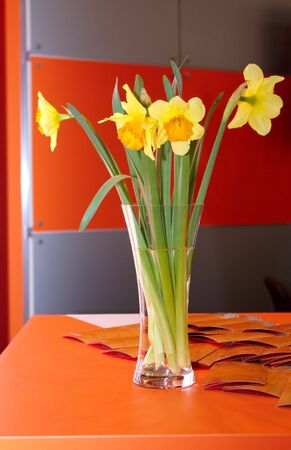 A vase full of bright daffodils against an orange modern interior