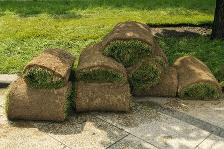 LAWN IN THE ROLLS photo