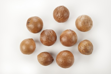 nuts of macadamia on white,australian nuts Stock Photo - 16163226
