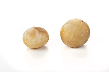 nuts of macadamia on white,australian nuts photo
