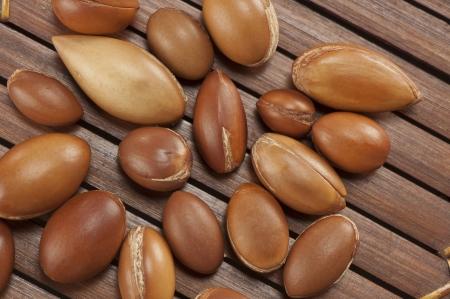 seeds of argan,Morocco plant,a close up