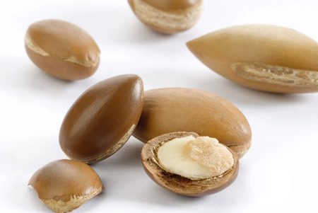 seeds of argan on white background,a close up