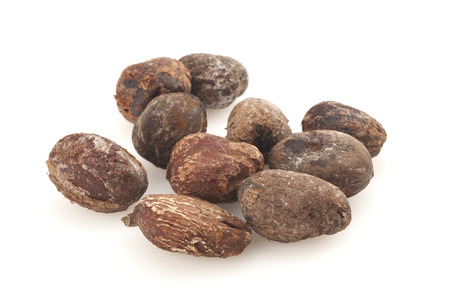 shea nuts isolated on white background, karitè seeds Stock Photo