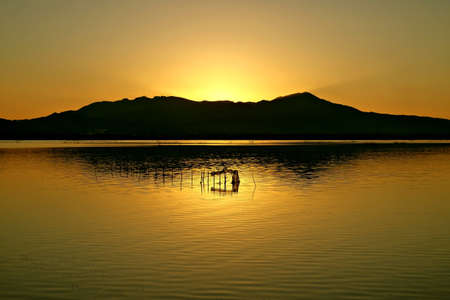gold sunrise Banco de Imagens