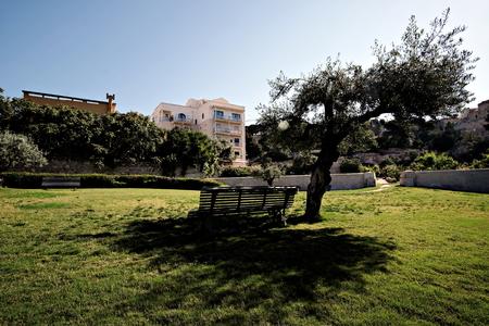 vegetable garden Orto dei Cappuccini in Cagliari, a bench in the shadow Editorial