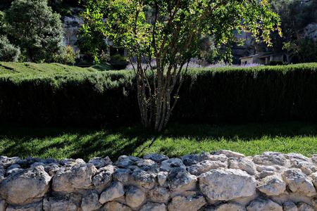 vegetable garden Orto dei Cappuccini in Cagliari, a view
