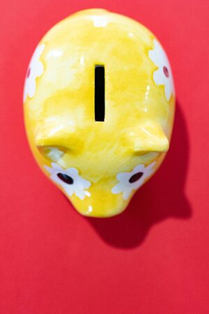 yellow piggy bank on a red background. Saving money. Finance and savings economy. 免版税图像