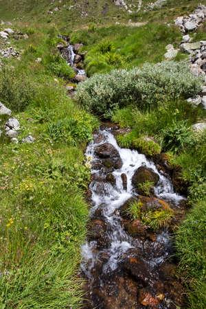 Formazza (VCO), Italy - June 25, 2020: A stream near Lake Vannino, Formazza Valley, Ossola, VCO, Piedmont, Italy