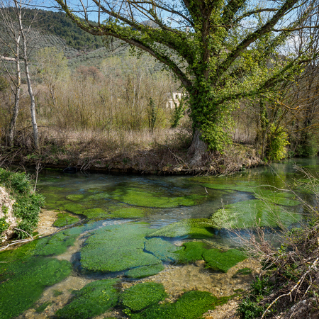 Clitunno river close to the town of Campello in Umbria (Italy). Foto de archivo