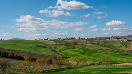 Countryside around the town of Montefalco in Umbria (Italy). Landscape format.