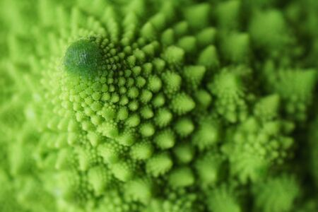 Close up of the detail of a Romanesco Broccoli (or Cauliflower) with its natural fractal pattern.